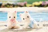 Silk Cat Twins